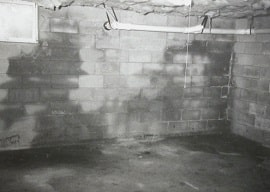 buying a home with a wet basement