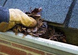 clean gutters dry basement